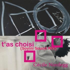 CÉCILE NORDEGG - T'AS CHOISI (SOYINI SOUND MIX)